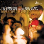 The Bamboos | I Got Burned (feat. Tim Rogers)